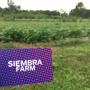 Siembra Farm Card 2021-2022